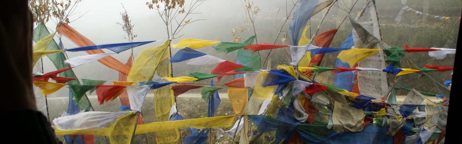 The Karmapa Issue